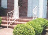 Front Step Rails with panels #PR-6)